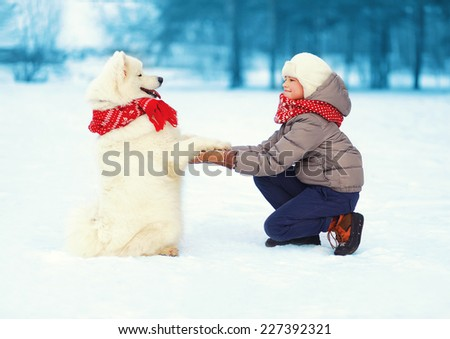 Christmas, winter and people concept - happy teenager boy playing with white Samoyed dog outdoors in winter day, positive dog gives paw owner     - stock photo