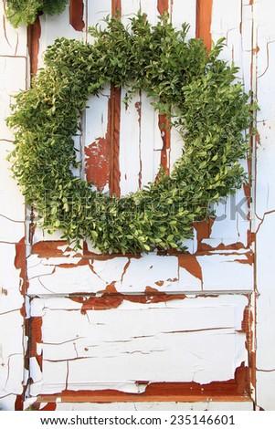 Christmas wreath of fresh buxus branches - stock photo