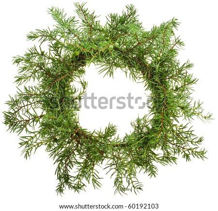 christmas wreath of natural branches of juniper isolated on white - stock photo