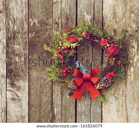 Christmas wreath with natural decorations with a beautiful bluejay perched, hanging on a rustic wooden wall with copy space.