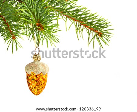 Christmas yellow cone on fir tree isolated on white background. - stock photo