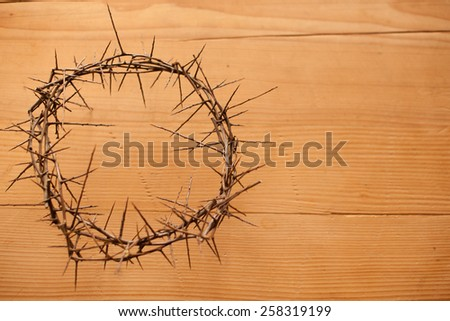 christs crown on old wooden background - stock photo