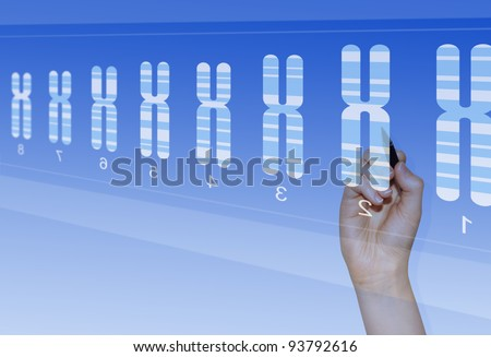 Chromosome research for biomedical analysis of genetic abnormalities - stock photo