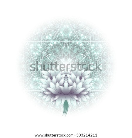 chrysanthemum and circular complex ornament flower of life, illustration - stock photo