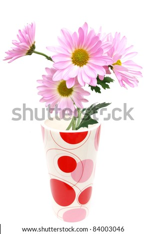 Chrysanthemum blooming vase in fall - stock photo