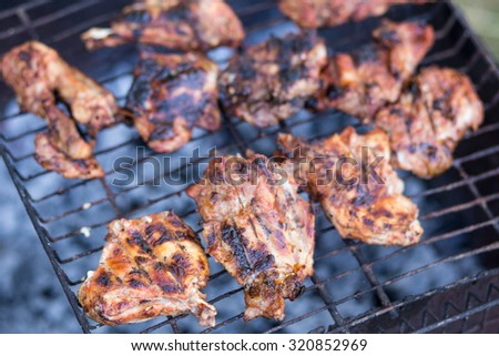 Chunks of meat on grill fire. Barbecue party outdoor background