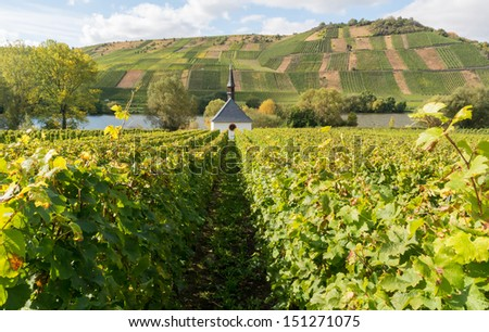 Church and vineyard near the Moselle in Germany near the village Neumagen. - stock photo