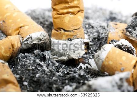 Cigarette Butts - stock photo