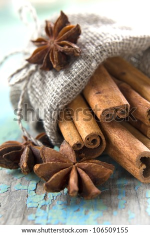 Cinnamon and anise in a small burlap sack - stock photo