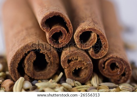 Cinnamon and spices, macro shot, shallow DOF - stock photo