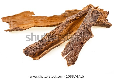 cinnamon bark isolated on white background - stock photo
