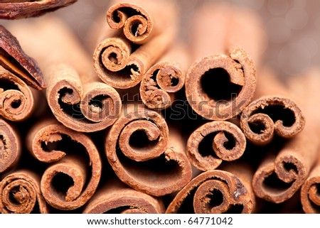 Cinnamon spice Sticks on wooden board close up