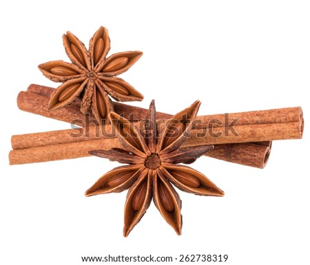 cinnamon stick and star anise spice isolated on white background closeup - stock photo