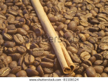 Cinnamon stick on the coffee beans