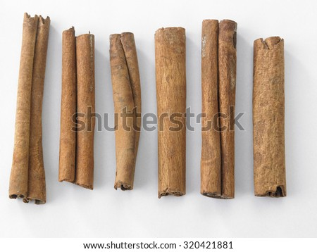 cinnamon stick on the white background