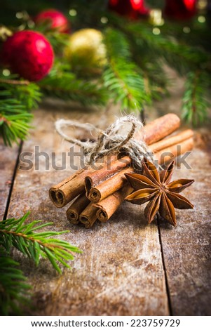 Cinnamon sticks and anise stars for mulled wine - stock photo