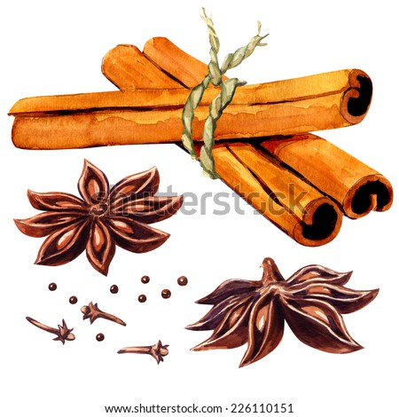 Cinnamon sticks and star anise isolated - stock photo