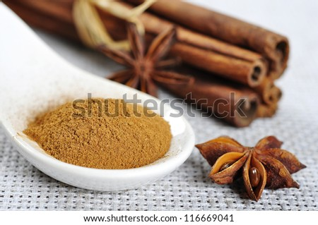 Cinnamon sticks, anise and cinnamon powder closeup. Small shallow DOF. - stock photo