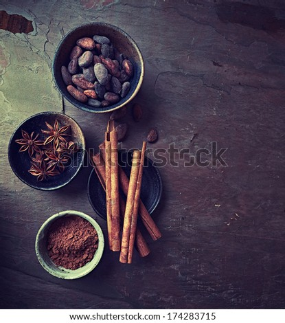 Cinnamon sticks, anise and cocoa on stone background - stock photo
