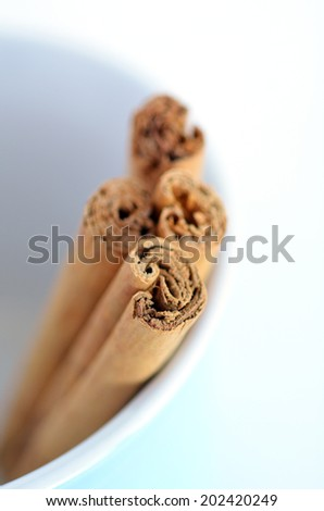 Cinnamon sticks in a bawl isolated on white background. Vertical top view with copy space