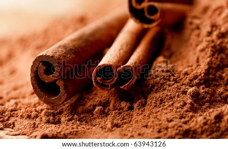 Cinnamon Sticks with Cocoa - stock photo