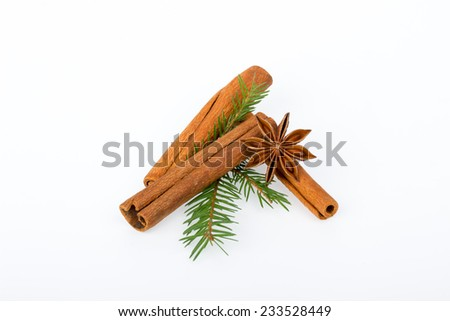 Cinnamon sticks with fir branches and star anise on white background - stock photo