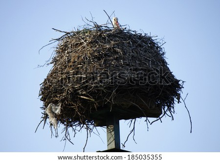CIRCA MAY 2013 - BRANDENBURG: a storks nest on a rooftop in rural Brandenburg, Germany.