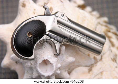 Circa 1889, Model 95, Type II Model 3 Double Derringer, on a conch shell