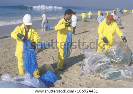 CIRCA 1990 - Teams of environmental workers organizing cleanup efforts of the oils spill in Huntington Beach, California - stock photo