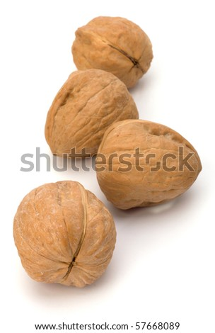 Circassian walnut isolated on the white background