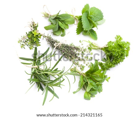 Circle of ribs with herbs isolated on white background - stock photo