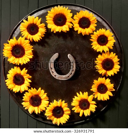 Circular frame of colorful bright yellow summer sunflowers with a lucky horseshoe in the centre arranged around the rim of a vintage tray over a black background, view from above - stock photo