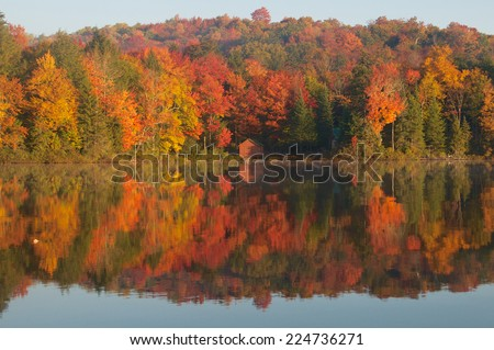 Circular pattern shows the beauty of the autumn colors in the trees - stock photo