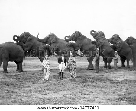 Circus elephants and clowns - stock photo