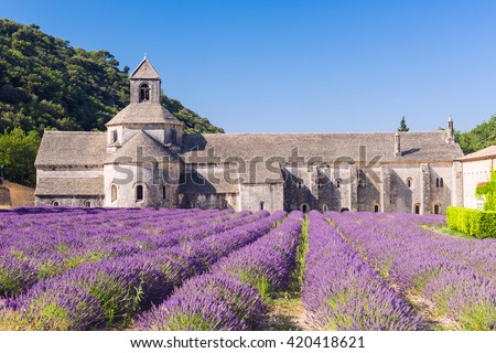 Cistercian Abbey of Senanque and blooming rows of lavender. Gordes, Vaucluse, Provence - France - stock photo