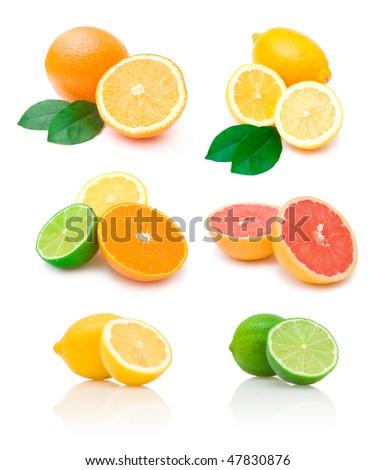 citrus collection - stock photo