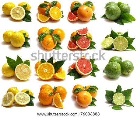 Citrus for all tastes - stock photo