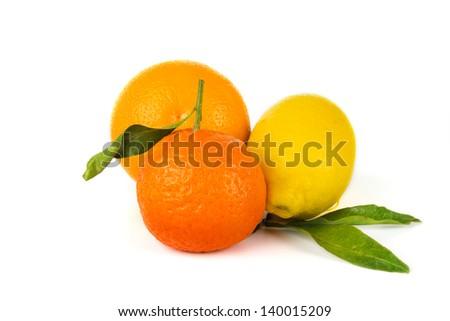 Citrus fruits: orange, lemon, tangerine - stock photo