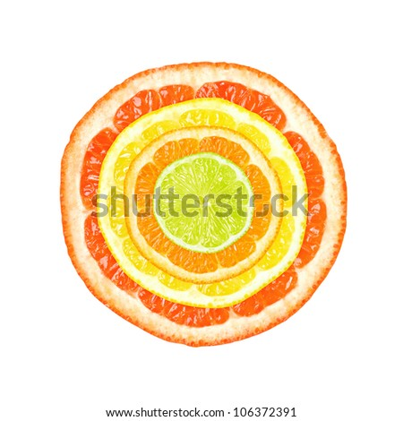Citrus slices in four colors and sizes isolated on white background.