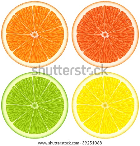 Citrus slices - orange, lemon, lime, grapefruit. Isolated on white, clipping path. - stock photo