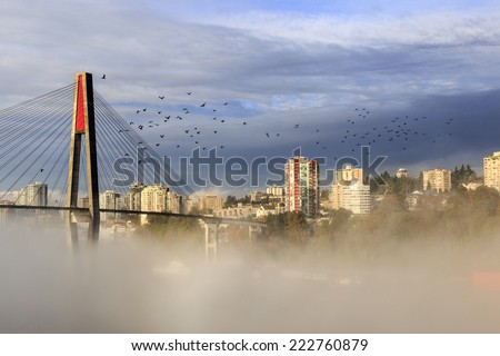 city in fog with crows flying over - stock photo