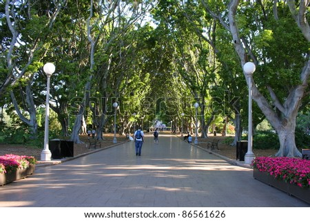 City park by the Central Business District in Sydney city centre New South Wales Australia - stock photo