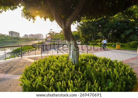 City park by the river - stock photo