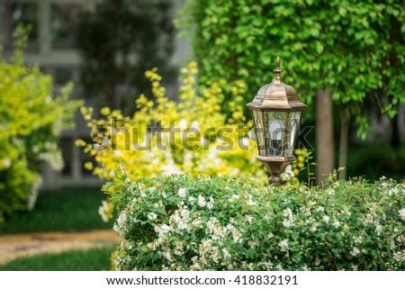 City Park, garden flowers, Cafe, - stock photo