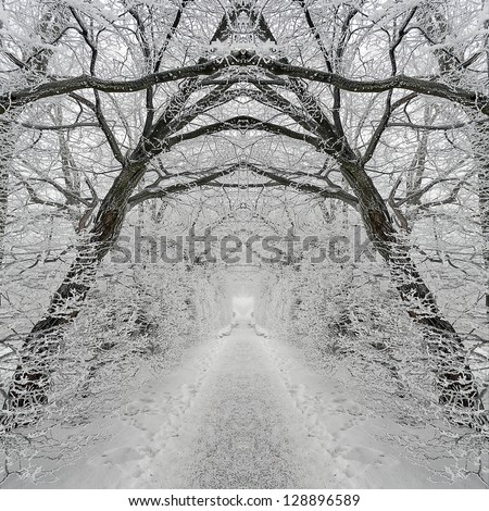 City park of St. Gallen, in a foggy winter day. symmetrical Collage - stock photo