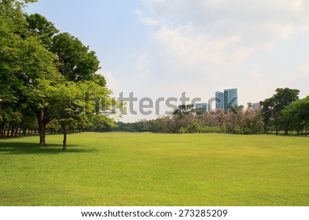 City park under blue sky with building background - stock photo