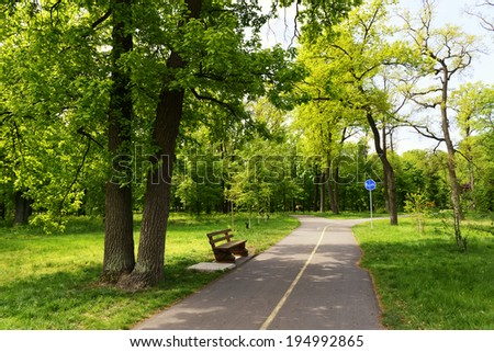 City park with bench, bicycle road and footpath - stock photo
