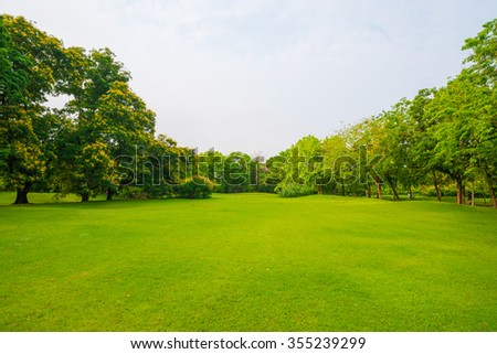 City park with green grass field in central city - stock photo