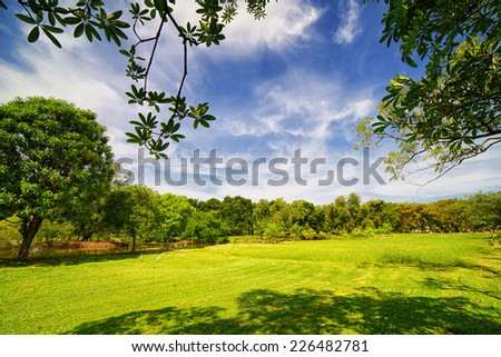 City park with green lawn and some trees - stock photo