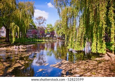 City pond - stock photo